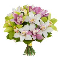 Букет из Орхидеи Цимбидиум микс