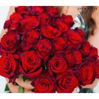 25 роз Эксплорер 70см