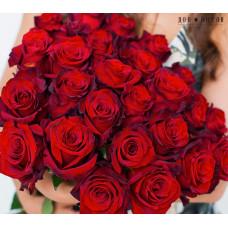 25 роз Эксплорер 60см