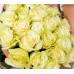 25 роз Мондиаль 70см